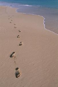 足跡 砂浜の写真素材 [FYI02818025]