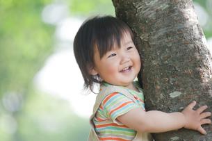 樹の幹につかまる男の子の写真素材 [FYI02818217]