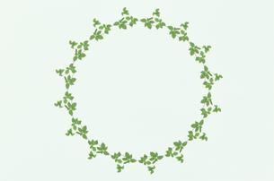 葉の円のフレームの写真素材 [FYI02818417]