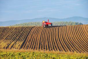 畑とトラクターの写真素材 [FYI02818559]