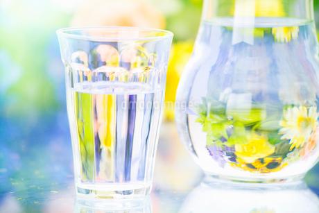 コップの水の写真素材 [FYI02818581]