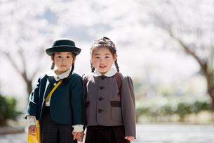 桜並木で手をつなぐ2人の幼稚園児の写真素材 [FYI02818605]