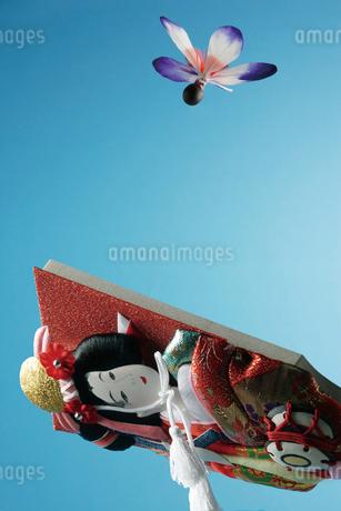羽根つきの写真素材 [FYI02818722]