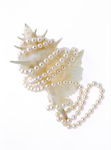 真珠のネックレスの写真素材 [FYI02819176]