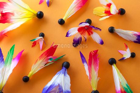 羽子板の羽根の写真素材 [FYI02819882]