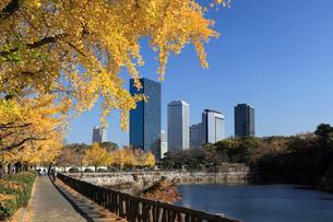 秋のイチョウと大阪ビジネスパークの写真素材 [FYI02821617]
