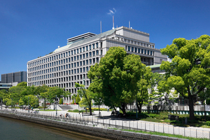 新緑と大阪市役所の写真素材 [FYI02821623]