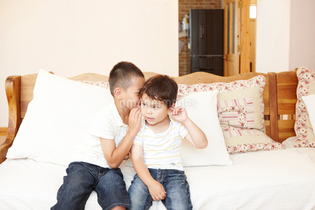 ソファの上で内緒話をする兄弟の写真素材 [FYI02821710]