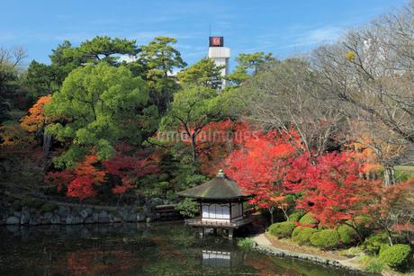 和歌山城の紅葉渓庭園の写真素材 [FYI02821837]