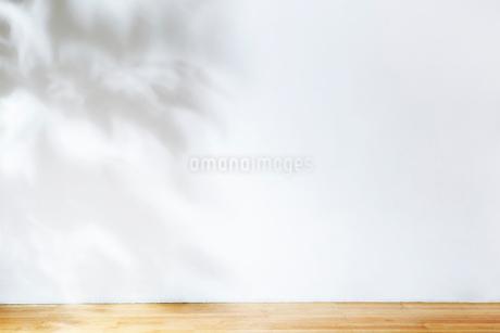 リビングの床の写真素材 [FYI02821893]