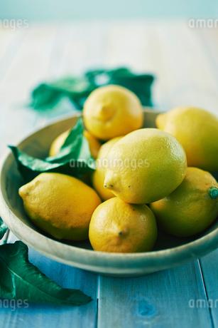 テーブルの上のレモンの写真素材 [FYI02821897]