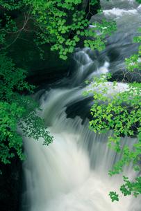 新緑の竜頭ノ滝付近と湯川の写真素材 [FYI02821951]