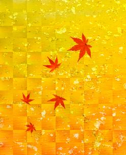 和紙と紅葉の写真素材 [FYI02822236]