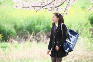 桜並木の下を歩く女子中学生の写真素材 [FYI02823058]