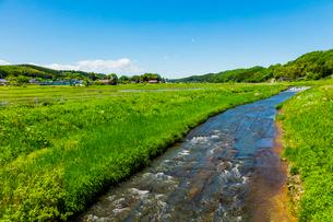 春の里山の川の流れの写真素材 [FYI02823083]