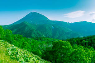 羅臼岳の眺望の写真素材 [FYI02823150]