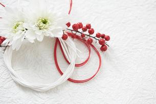 白い和紙上の水引と花の締縄の写真素材 [FYI02823825]