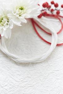 白い和紙上の水引と花の締縄の写真素材 [FYI02823883]