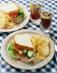 アメリカンサンドイッチの写真素材 [FYI02824061]