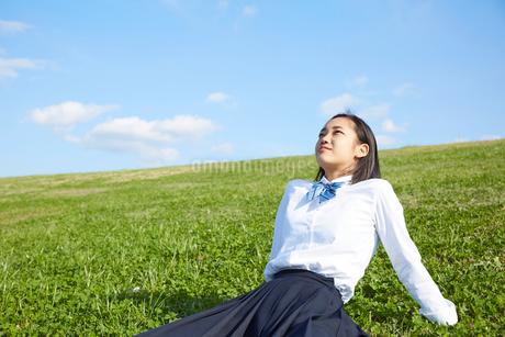芝生に座って空を見上げる女子高生の写真素材 [FYI02824067]