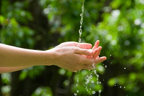 水を受ける手の写真素材 [FYI02824109]
