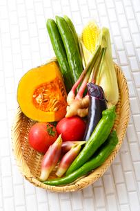 夏野菜(和風)の写真素材 [FYI02824120]