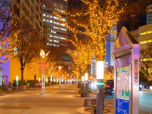 夕暮れの神戸ハーバーランド (X'Mas電飾)の写真素材 [FYI02824177]