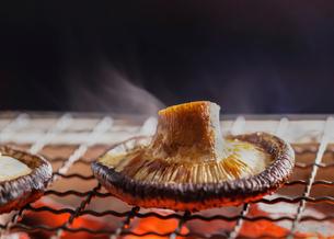 シイタケを炭火で焼くの写真素材 [FYI02824330]