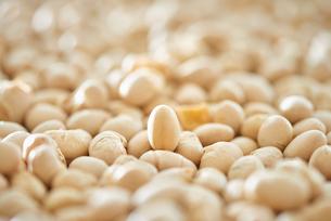 たくさんの煎り大豆の写真素材 [FYI02824410]