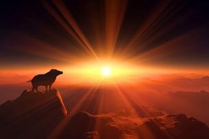 日の出とイノシシのシルエットのイラスト素材 [FYI02824427]