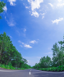 北海道 十勝平野 点景  青空と雲と直線道路 の写真素材 [FYI02824741]