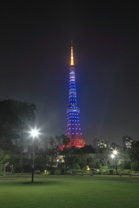 芝公園から東京タワーのライトアップ 夜景の写真素材 [FYI02824756]