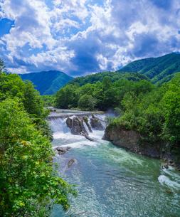 北海道 自然 風景 十勝平野   新緑の札内川とピョウタンの滝の写真素材 [FYI02824838]