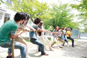 綱引きをする複数の男女大学生の写真素材 [FYI02824889]