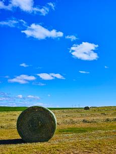牧草ロールと青空に夏雲の写真素材 [FYI02824929]