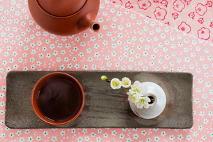 日本茶と梅の花の写真素材 [FYI02825252]