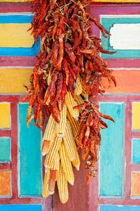 柱につるした赤唐辛子ととうもろこしの写真素材 [FYI02825276]