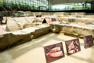 金沙遺跡の写真素材 [FYI02825339]