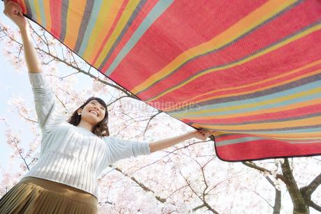 レジャーシートを広げる女性の写真素材 [FYI02825381]