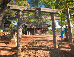 染谷城跡の豊染英神社の写真素材 [FYI02825740]