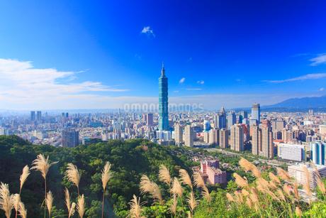 台北101などのビル群の写真素材 [FYI02825757]