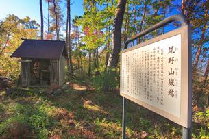 尾野山城跡の本郭と解説板の写真素材 [FYI02825983]
