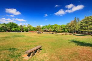八幡原史跡公園の芝生と木のベンチの写真素材 [FYI02826038]