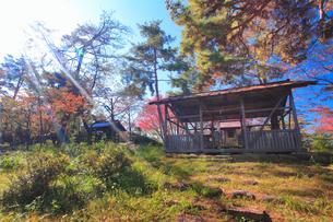 陣場山城跡の神明宮と木もれ日の写真素材 [FYI02826043]
