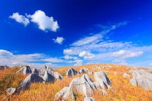 草紅葉とカルスト台地の石灰岩とわた雲の写真素材 [FYI02826053]