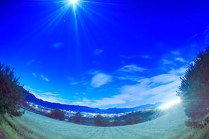 月夜の花咲く蕎麦畑と塩田平の夜景の写真素材 [FYI02826099]