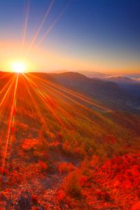カラマツ林の紅葉と八ケ岳などの山並みと朝日の写真素材 [FYI02826147]