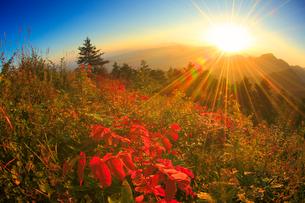 朝日の光芒と冠着山などの山並みと紅葉の樹林の写真素材 [FYI02826249]