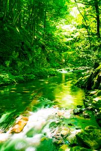 横川渓谷・新緑映す横川の清流と蛇石の写真素材 [FYI02826343]