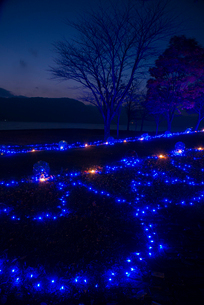 十和田湖湖畔のイルミネーションの写真素材 [FYI02826421]